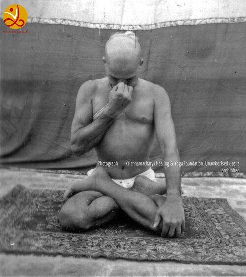 T krishnamacharya - the father of modern yoga