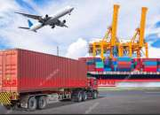 Search Import Export Data Online