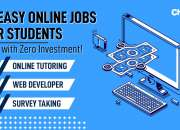 10 Easy Online Jobs for Students - Earn with Zero Investment