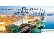 Find Indonesia Export Data at the Best Prices