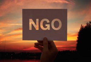 Ngo funding saviour foundation