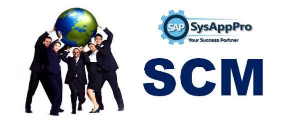 Sap scm training in delhi