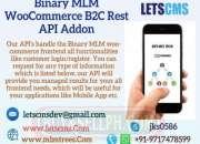 BMW WordPress Rest API FrontEnd | Binary MLM WooCommerce Customer Login