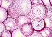 Iranian onion supplier