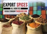 Are you looking for verified global buyers for spices?