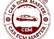 Car ecm master training course online to earn millions